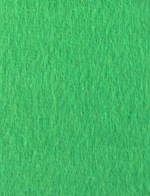 Chroma Key (Green Screen)