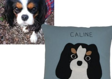 10 oz Color Canvas DIY Dog Pillow