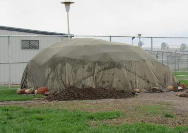 OD Canvas Tarp Shelter